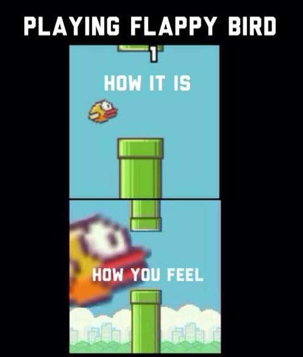 Funny flappy bird memes - photo#45